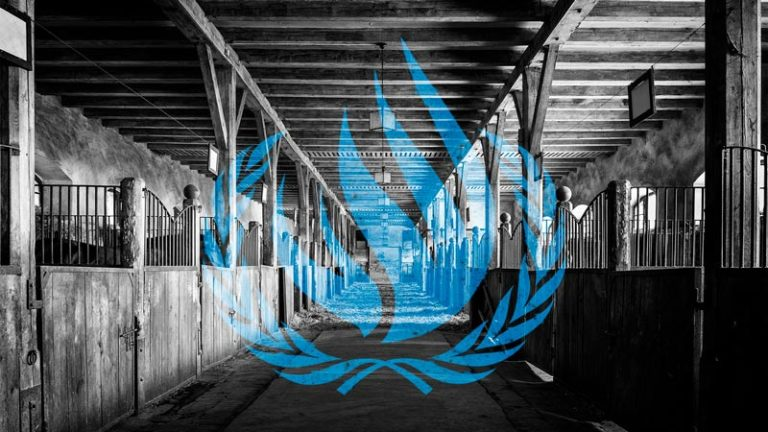 The United Nations Human Rights Council is a barn full of humanoid